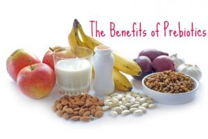 Understanding the benefits of prebiotics